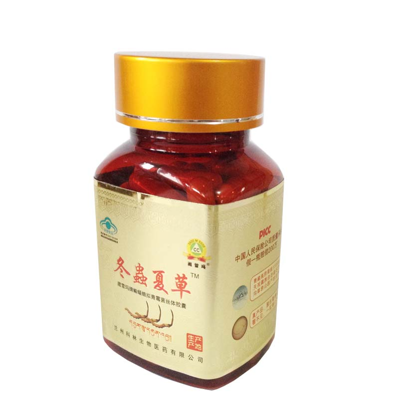 cordyceps extract  products Introduction